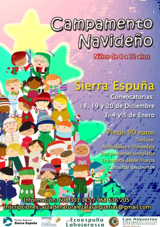 cartel navidad_15